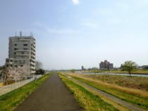 広瀬川環境