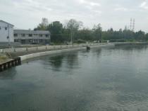 砂押川(その2)